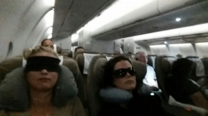 Flight Agent