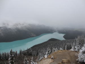 Peyto Lake - Banff NP